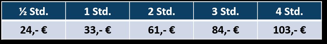 Preise Elektroboot Bootsvermietung Friedrichshafen Boot und Spass